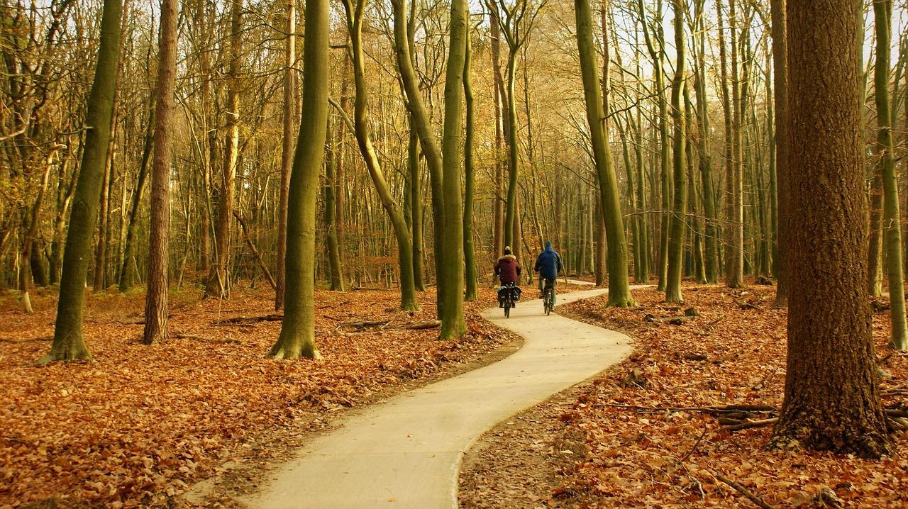 You are currently viewing Natürlicher Urlaub in der Veluwe