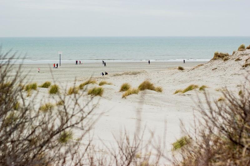 Naturschutzgebiet Niederlande: die Küste