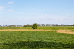 Read more about the article Ländlicher Urlaub in der Region Groningen