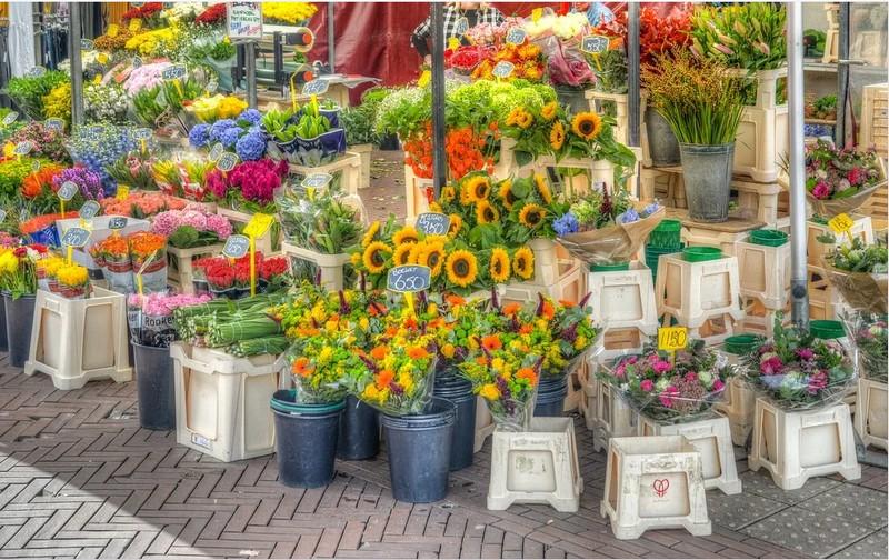 Der riesige Blumenmarkt in Groningen am Karfreitag ist bestimmt einen Besuch wert.