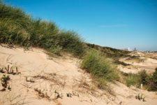 Strand & Stadt beim Urlaub in Zandvoort