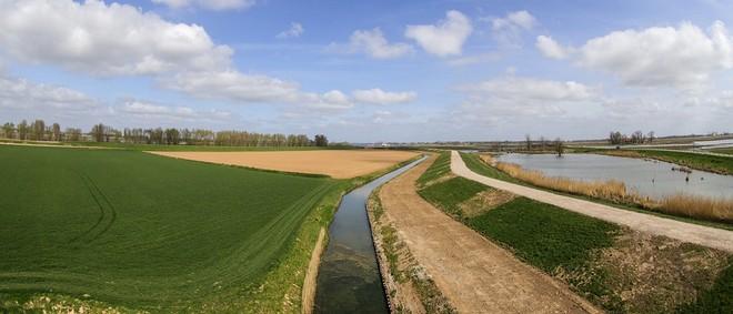 Nationalpark De Biesbosch