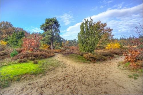 You are currently viewing Urlaub in Drenthe: Natur & Geschichte