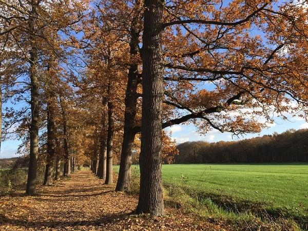 You are currently viewing Vielseitiger Urlaub in der Region Utrecht